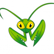 Hosting Mantis